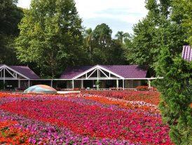 Unique Garden: arte e relax no interior paulista